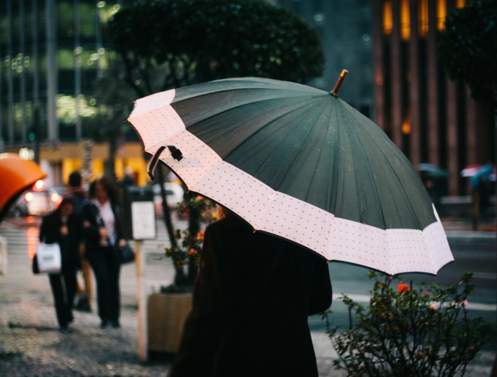 Ассортимент и виды популярных зонтов от дождя